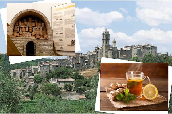 Visita guidata al centro storico con tappa all'Antiquarium e tisana al museo