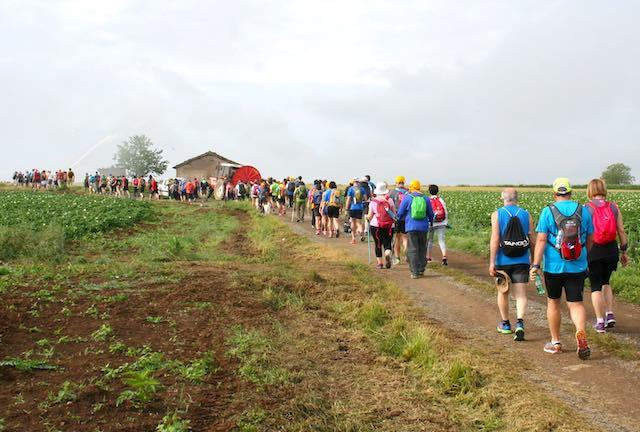 """""""World Francigena Ultramarathon"""". Le strade della Toscana portano ad Acquapendente"""