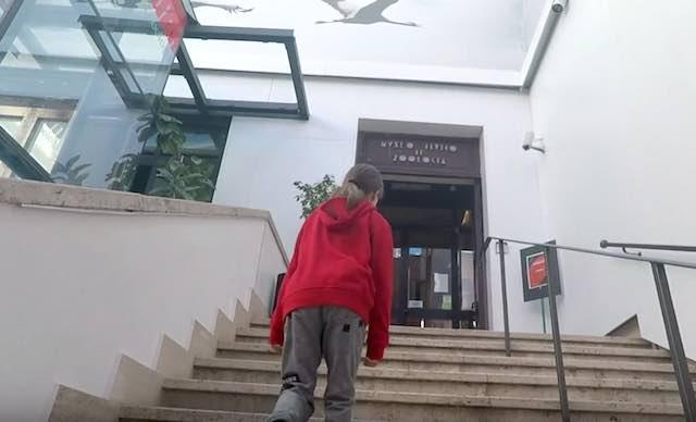 Sul Museo Civico di Zoologia di Roma il nuovo video di Francesco Barberini